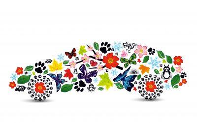 Four Car Care Tips For Spring
